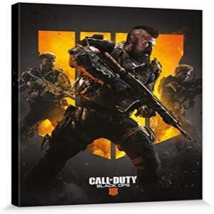Cuadro de Call of Duty Black Ops 4